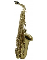 Roy Benson Eb-Alto Saxophone AS-202 Student Series