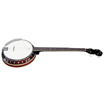 Tennessee Banjo Economy With case
