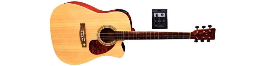 Electric Acoustic Guitars